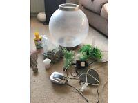 Biorb 60l round fish tank