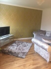 2 bed house tremorfa