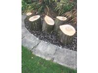 Logs for sale at £1 each or all for £4