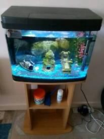 40 litre fish tank