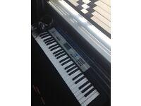 Casio electronic keyboard & stand