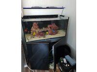 Marine full setup fish tank