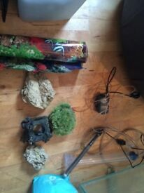 6ft fish tank and accessories