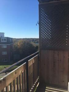 **BRIGHT AND SPACIOUS ONE BEDROOM WITH BALCONY NEAR BRAEMAR**