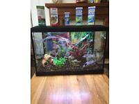 Fish Tank Super Fish Aqua Expert 70l
