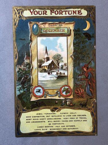 c 1910 DECEMBER FORTUNE with WITCH Cauldron BLACK CAT Owl Postcard Antique