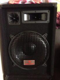 PA Speakers 300w