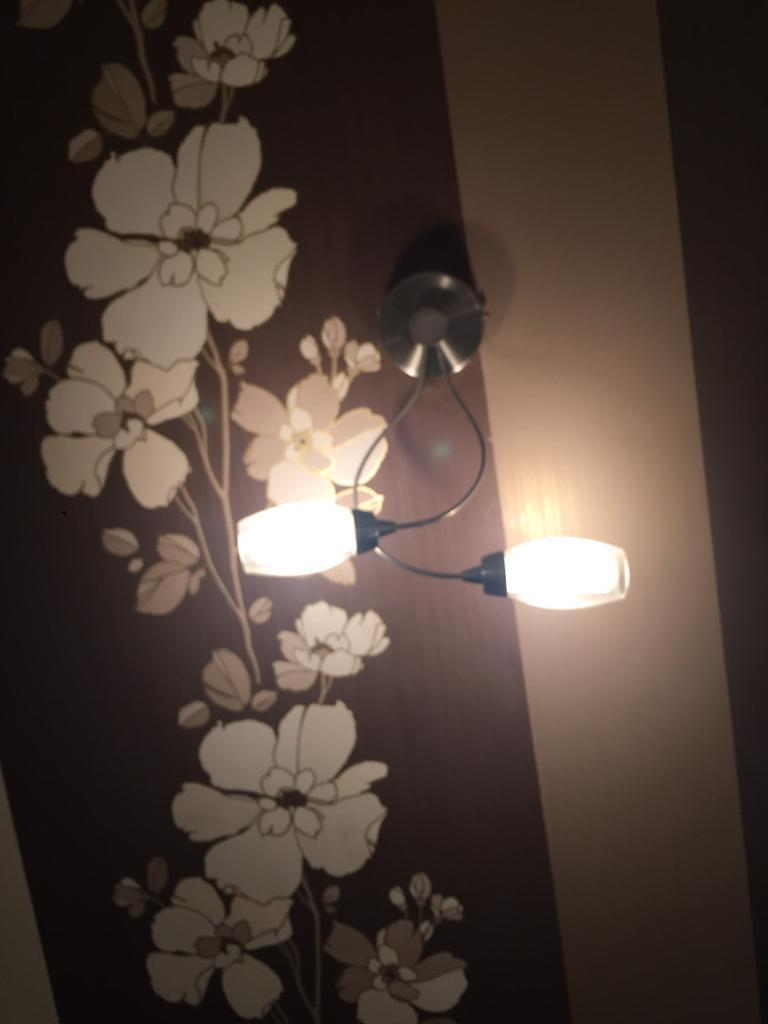 Ceiling and wall lights £6 each or 4 for £20