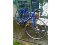 bike for sale -CARRERA GRYPHON --lightweight bike -- nice !