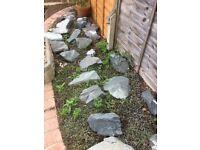 Grey rocks / rockery