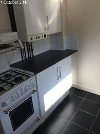 Beautiful spacious 2 bedroom flat available in benwell only £495 per month
