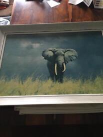David Shepherd Painting of Bull elephant in Longgrass by David Shepherd