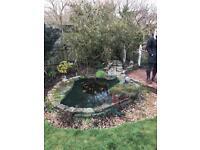 Complete pond set including pump/filt/fountain/feature stones