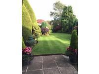 Hedge cutting, mowing, garden maintenance.