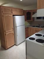 Complete set of hard wood kitchen cabinets and counter top