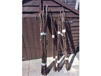 Bamboo canes/ Bean poles - approx 64 - circa 5ft tall