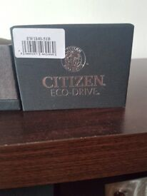 Ladies silver citizen eco drive watch