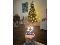 Christmas tree with decorations included