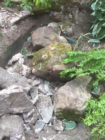 Free Rockery Rocks / Boulders