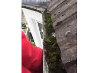 Gutter Cleaning Services . Repair/fixing and Services/ handyman