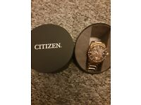 Gold citizen eco drive watch mens