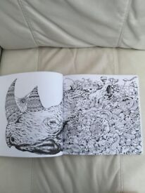 Animorphia - An extreme colouring and search challenge. Brand new. Can post or collect from Torquay.