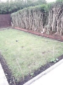 Garden services, grass and hedge cutting, trimming