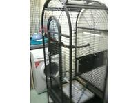 Parrot cage with a swing feeder tray with steps and perch wich u can take out