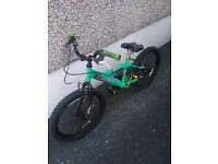 Kids green bike with 20inch wheels