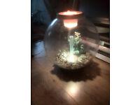 AQVARIUM REEF ONE BIORB COLDWATER WITH STANDARD LED LIGHT 30 LITRE FISH TANK BOWL