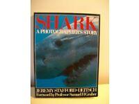 SHARK - A PHOTOGRAPHER'S STORY