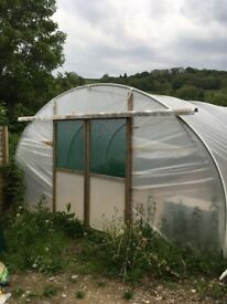12FT x 25FT Polytunnel very good condition
