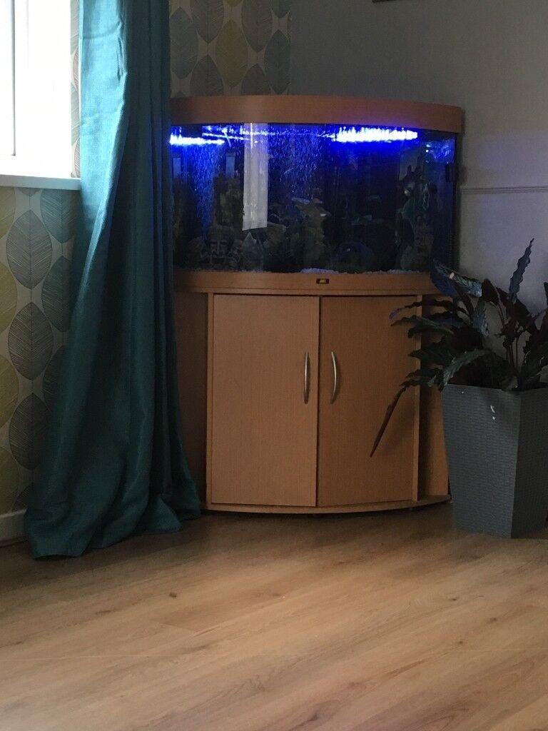 Jewel 190 corner tank