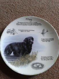 Danbury Mint collectors plate on Wedgwood china. Year of the Labrador. The month of May'