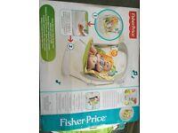 Fisher Price Sunny Days Take-along Swing & Seat