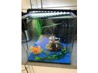 Fish tank cold and tropical water