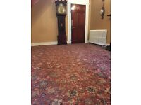 15.5ft by 19ft carpet