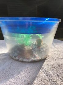 Goldfish bowl and pet container