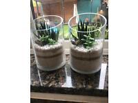 2 x Ornamental glass vases with sand/plastic cactus