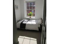 Double room in quiet, elegant flat - Central Bristol BS2