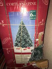 Christmas Tree, 6ft - Cortland Pine
