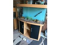 260l Juwel bow front fish tank 4 ft full set up with stand heater filter 2 x t5 light gravel more