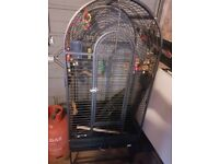 parrot cage large only £100 with toys and perch