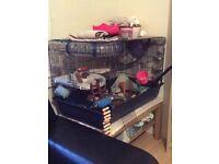 Rat/hamster cage