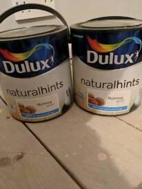 Dulux paint - nutmeg white