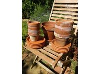 Terracotta plant pots with saucers