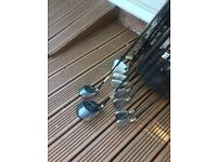 golf clubs.callaway irons 3,4,5,6,7,8,9,s/w.Bag,putter,Taylor made burner woods 1,3