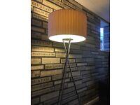 Two Floor lamps