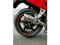 Delkevic Slip Exhaust