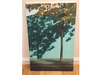 Tree Photograph on Canvas 68cm x 101cm